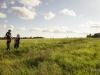 Suvi Saaremaal